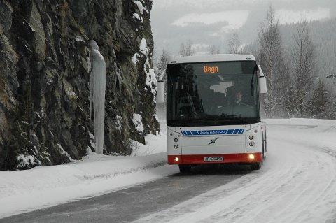 Ny lov: Etter behandling i Stortinget skal det nå vedtas ny bestemmelse i vegtrafikkloven som åpner for montering av alkolås i buss og minibuss