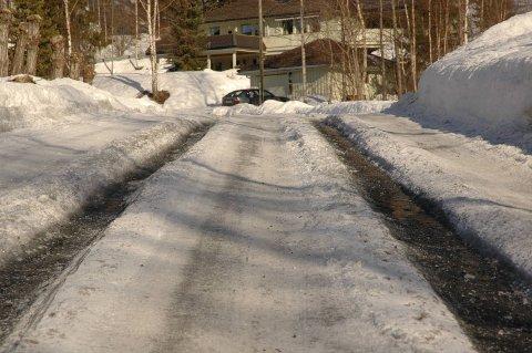 Teleskade: Det forventes mye teleskader etter den tunge vinteren. (Illustrasjonsfoto)