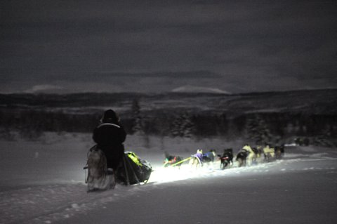 Hundeløp: Natt til lørdag vil noen av Norges beste hundespann kappløpe gjennom Valdres.