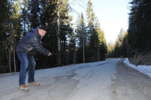 Har ikke ord: Harald Bjerknes (FrP) har problemer med å finne ord når han skal beskrive tilstanden på fylkesvegnettet nord for Flatøydegard i Etnedal.
