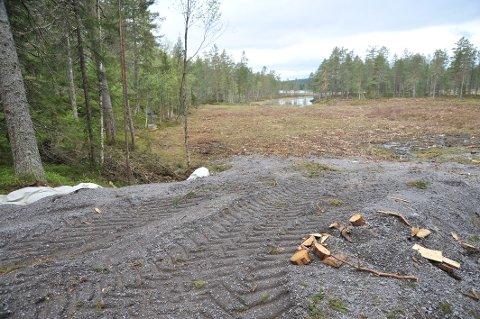 POSTBOND:Slik så det ut i slutten av mai på myra som i vinter ble klopplagt med tømmerstokker for å tjene som oppstillingsplass for trailere og bobiler. Veien ned til myra, med underliggende duk, skal nå være fjernet.