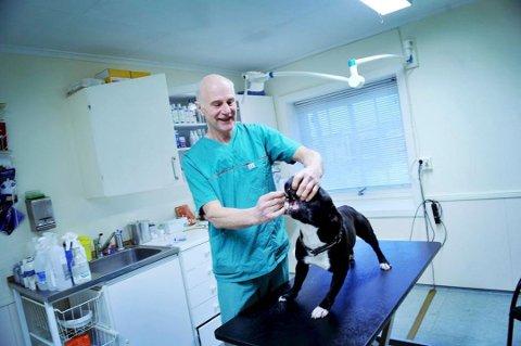 JOBBER MED DYR: Morten Ivar Tanum var med og startet Tønsberg dyreklinikk i 1994. Pensjonisten topper lønnslista, men ikke all lønn er fra veterinærvirksomhet.