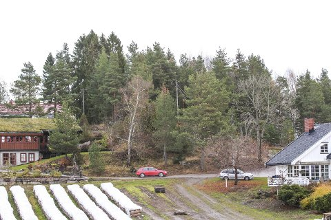 Annet areal: Fjellstrand Vel vil helst at omsorgsboligene ikke føres opp her bak Nesodden Torghandel. Foto: Staale Reier Guttormsen