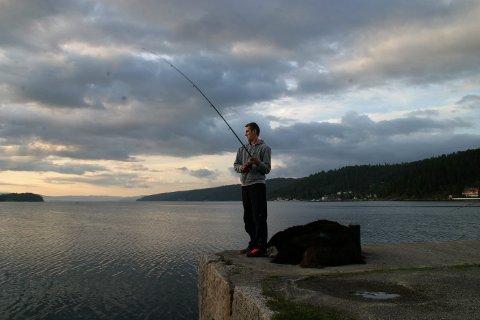 Få: Pål Moe ser nesten ikke ser fiskere langs land nå, men i 2013 ble det fisket fra Brevikbrygga.arkivfoto