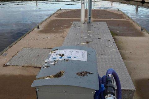 MÅKEMØKK: Tidlig denne uken ble brygge spylt og rengjort for måkemøkk.  Fredag morgen så det slik ut. FOTO: Ole Jonny Johansen