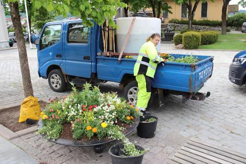 BLOMSTER: Anleggsgartner Anette Alm reiser rundt til mange plasser i Drøbak for å plante ut vakre blomster.
