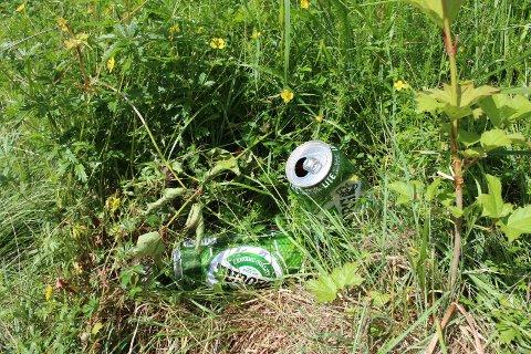 Søppel: Sørg for en beholder og container for avfall ved alle brygger og badestrender og tømming hele tiden, lyder oppfordringen til Are Berg Eriksen Foto: Henriette Slaatsveen