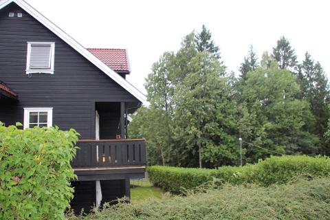 FRYKT: Her bor Anders Aune, og til høyre trærne som han vil ha fjernet i frykt for å de skal falle over huset og terrassen hans. Aune Selv ønsker ikke å bli avbildet i forbindelse med saken. FOTO: Ole Jonny Johansen