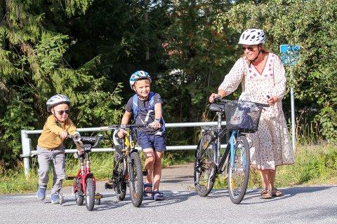 Solskinn: Det ser ut til at den farlige overgangen fra Bråtaveien over Drøbakveien, kan bli mindre farlig for Teodor (snart fem), Elias (åtte) og mamma Mari Skoglund Holthe Haddeland (45).