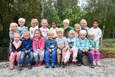 Neste uke skal denne gjengen med smårollinger tilbake til dagliglivet i Ellingstad barnehage. Foto: Trond Folckersahm