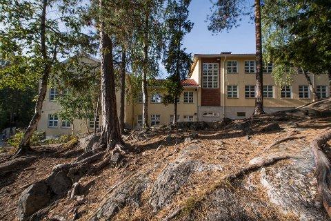 Røtterskogen ved Nesoddtangen skole.