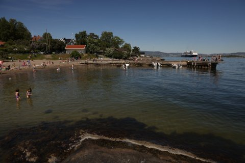 KAN PAUSE BADING I OSLOFJORDEN: MDG ønsker at hele Oslofjorden vernes. Bading bør kanskje settes på pause mens undersøkelser gjør.