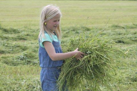 Gras til hesja: Maren Hodal tok i et tak.