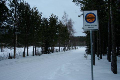 PRIVAT: Veiene i Alvdal er privatisert, og overbygningen heter Alvdal Vei.  Arkivfoto: Erland Vingelsgård