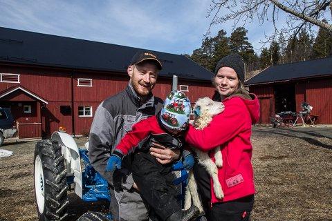 Gunhild og Knut Mørch Simensen, med sønnen Aksel og et av lammene som nå kommer til verden i fjøset på garden Storgjelten på Os.