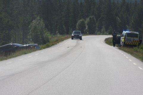 Trafikkulykke på fv. 29 mellom Alvdal og Folldal.