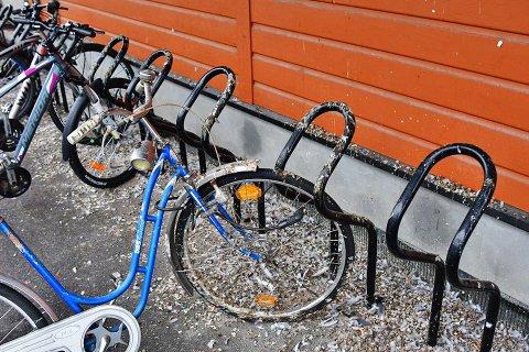Duer bæsjer ned sykler på sykkeparkeringen ved Ås stasjon.