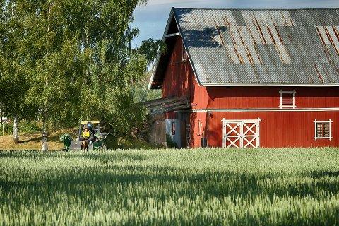 LANDBRUKSBYGNINGER: I dagens avis kan vi vise til nye tall som avslører hvilke kommuner som har størst og minst byggeaktivitet på landbrukseiendommer i Kommune-Norge.