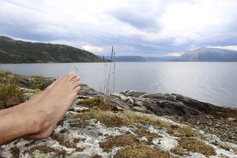 Erfaren: «Jan» har vært naturist siden tidlig tenårene. Nå nyter han solrike sommerdager i Gautviken Naturistområde – uten en tråd. Foto: Stine Skipnes