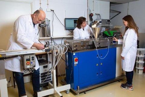 POPULÆRT: Plantebasert kost øker i popularitet, og med de nye bevilgningene styrker vi forskningen for forskningen for å finne alternativ til soya som kan dyrkes i Norge. Foto/CC: Joe Urruita/Nofima