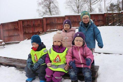 LIKER BARNEHAGEN SIN: Øverst fra venstre: Emmylou (4), Andrea (5). Nederst fra venstre: Oskar Elias (3), Jackie (2) og Marie (2) går i Mjølner barnehage på Brønnerud. Foto: Henrik Christie