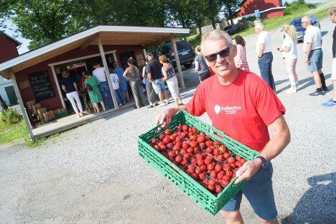 TIL UKA: Per Fredrik Saxebøl regner med at han kan tilby de første jordbærene til uka. – Men det blir i liten skala, understreker han.