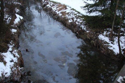 DEKKER OVERFLATEN: Store deler av overflaten på Neselva hadde en blålig farge søndag ettermiddag.
