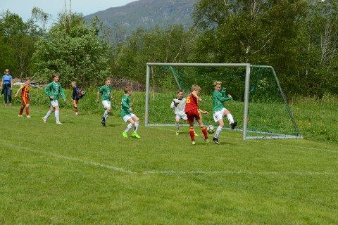 Gressbanene på Håsen er hyppig brukt under Hydro Cup. Her fra en av kampene under turneringen i 2017.