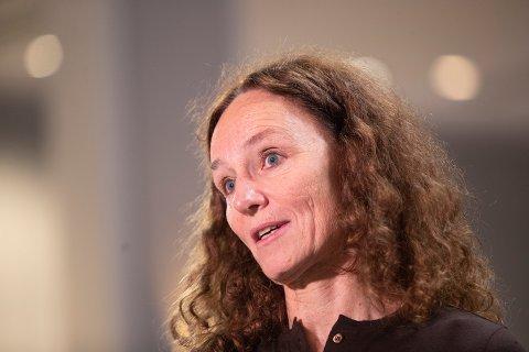 Direktør ved Folkehelseinstituttet Camilla Stoltenberg. Foto: Terje Bendiksby / NTB