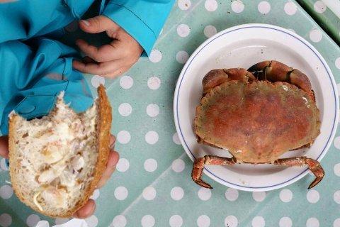 @gretesypiken: Krabber til lunsj!