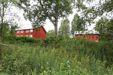 Eiendommen Bakken på Vestøl eies av Knut Hartveit og har vært kasteball mellom eier, kommunen, fylkesmannen og Landbruksdirektoratet i årevis.