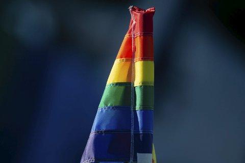 LABER BRIS: Homoholdningene til Sørlendinger gir ikke vind i homobevegelsens flagg, da landsleden havnet på jumboplass i flere av kategoriene i en nylig utgitt undersøkelse.Foto: scanpix