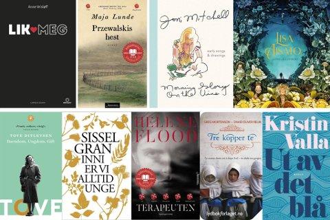 Her er noen av bøkene som anbefales fra Risør bibliotek og Lindstøl Libris i juleferien.