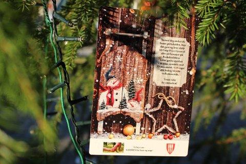 Disse lappene henger på juletrær i øvre Gjerstad og på Brokelandsheia. På hver lapp henger det ett ønske fra et barn i Gjerstad.