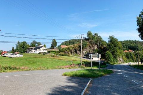GAMLE CAMPERE: Her på Røed camping fant arkeologer spor etter bosetning som nå er datert tilbake til romertida. Funnområdet ligger tett på Risørveien.