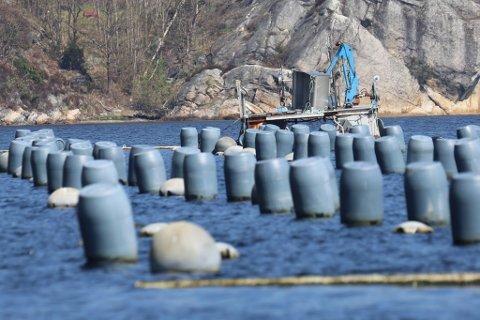 Eieren av blåskjellanleggene i Risør, Agder Mussels AS, gikk underskudd for femte år på rad.