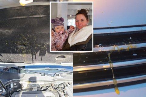 FRUSTRERT: For andre gang på en uke har eggkastere operert i Gjerstad. Marie Helene Moland opplevde å få motorrommet fullt av egg lørdag kveld. Politiet oppfordrer nå foreldre om å ta en prat med barna sine.