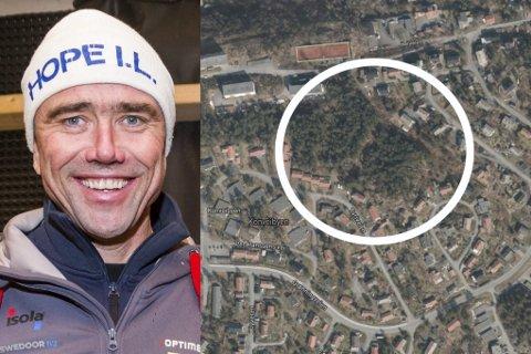 TO FELT: Arvid Sollie og Risør Eiendom AS har søkt å få opsjon på to områder på Viddefjell for å utvikle boligfelt. TIlsammen er det områder på nesten 20 mål. Ett av dem ligger sør for Heiveien.