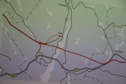 ALTERNATIVET: Statens vegvesen foreslår kryss ved Birkeland på Feda, mens Nye Veier foreslår en mer rett linje fra et kryss ved Røyskår over Fedafjorden ved Lervika og et kryss ved Frøytland før veien fortsetter mot Lølandsvannet i Flekkefjord.