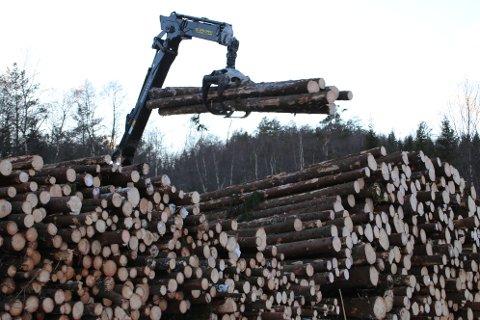 Bane Nor ber Lister-kommunene tenke på opplastingsplasser for tømmer langs jernbanen for å forsyne et nytt planlagt biodrivstoff-anlegg.