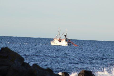MYE TORSK: «Fjordbuen» lå på snurrevadfiske ved Jølle fredag. Flekkefjord-båten tok da en fangst på rundt 900 kilo og torsken utgjorde hovedtyngden.