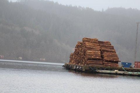 MYE TØMMER UTSKIPES: I vinter er det utskipet mye tømmer fra Lister-kommunene og hovedtyngden går til Tyskland.