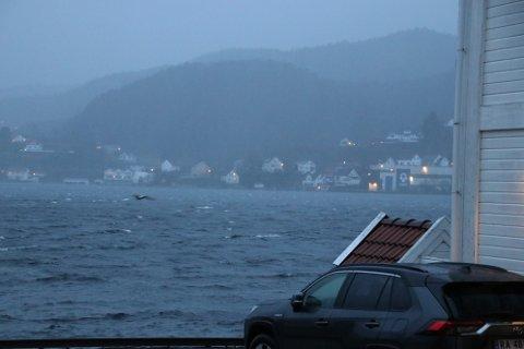 KRAFTIG VIND OG NEDBØR: Det er ventet kraftig vind og nedbør torsdag.