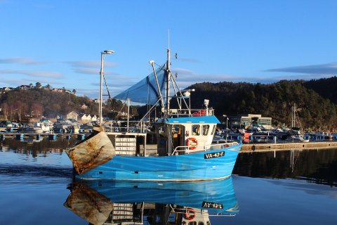 GODT FISKE: Reketråleren «Sienna» av Hidra hadde et godt fiske på revet denne uken. Tre hal gav 860 kilo reker, derav 503 kilo kokt, for mottaksstasjonen i Kirkehamn.