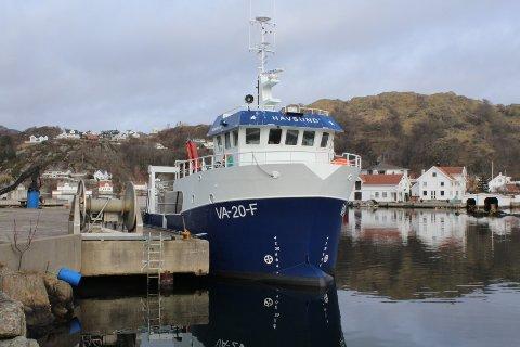 GOD SESONG: «Havsund» tok skreikvoten på to uker og snurrevadbåten fra Hidra kom ut med 13 tonn skrei i rund vekt på beste tur sør av Henningsvær.
