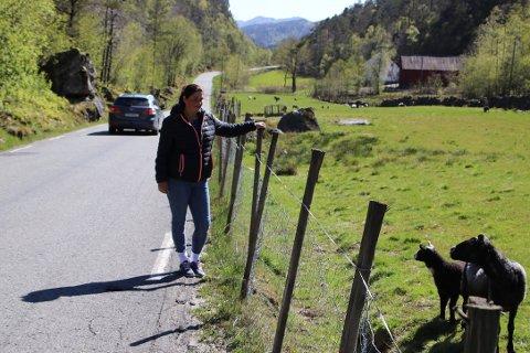 GUSE: Lill Fossdal som bor og driver gården på Guse er fortvilet over all trafikken på Åsevegen