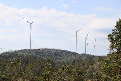 ØNSKER FLYTTING: Kommunestyret ber om at noen av de nylig oppsatte turbinene på Øksendalsheia flyttes.