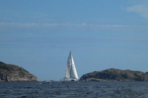 UTNYTTE VIND OG PLASSERING: På fine sommerdager er det seilbåtene som utnytter vinden på havet, men nå vil store industriaktører gå sammen for å etablere et miljø som kan bli med på å utvikle Sørlige Nordsjø II for flytende havvind.