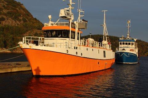 TEINEFISKE: «Skalldyret» av Flekkefjord satser på havteinefiske og det er brosme som utgjør hovedtyngden i dette fisket.