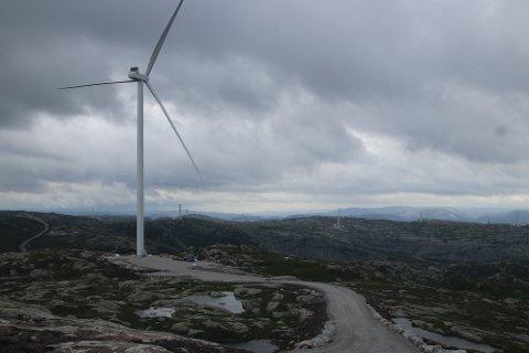 INSPEKSJON: Onsdag og torsdag denne uken er kommune, fylkeskommune og statsforvalter invitert til inspeksjon av Buheii vindkraftverk og nettilknytningen til Ertsmyra ved Tonstad.